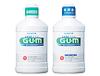 Gum_05_img1_3