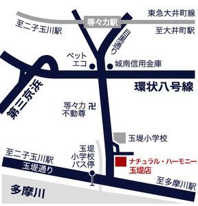 Tt_map_3